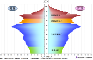 2030年の人口ピラミッド