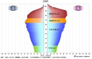 2065年の人口ピラミッド