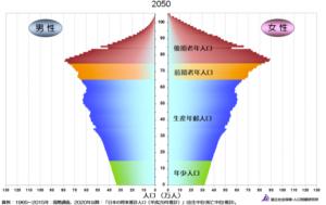 2050年の人口ピラミッド