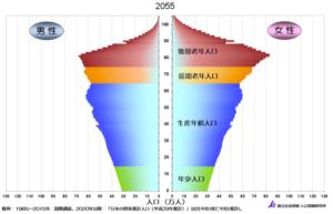 2055年の人口ピラミッド